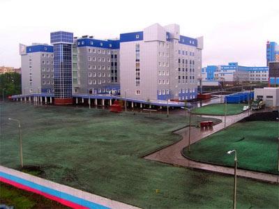 К приезду Путина в Саранске покрасили землю в зеленый цвет (ФОТО)
